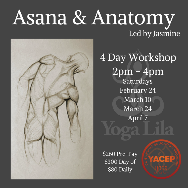 asana and anatomy workshop series poster
